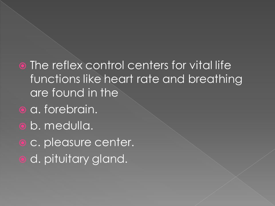 The reflex control centers for vital life functions like heart rate and breathing are found in the