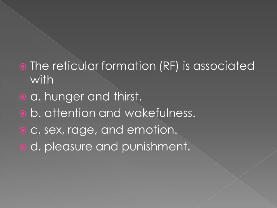 The reticular formation (RF) is associated with