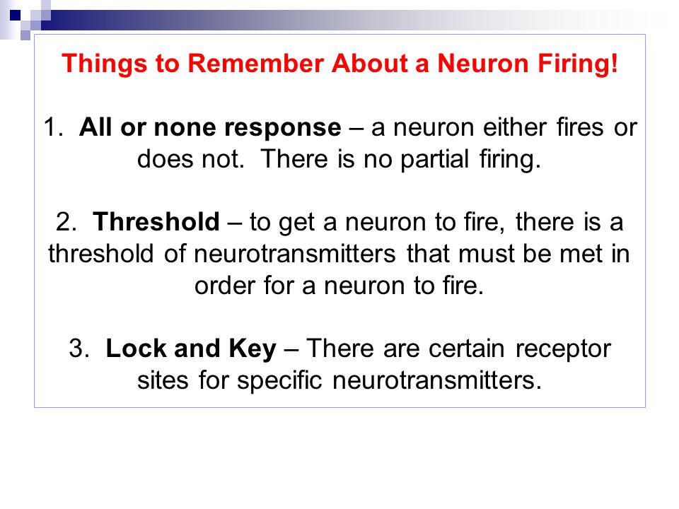 Things to Remember About a Neuron Firing. 1