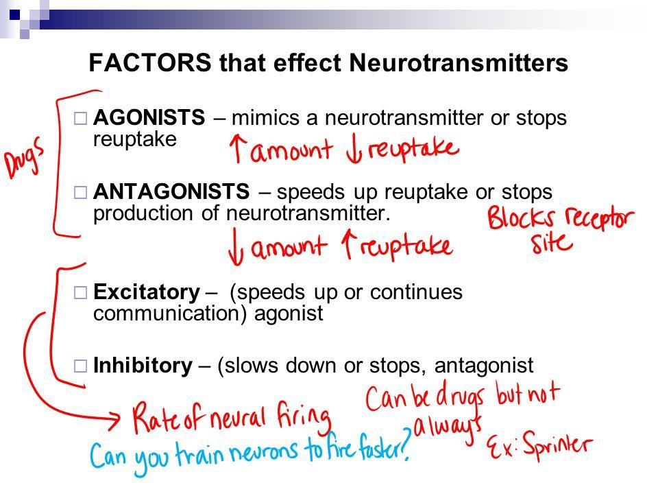FACTORS that effect Neurotransmitters