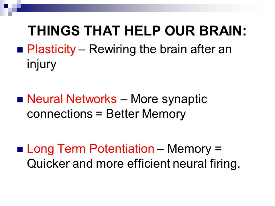 THINGS THAT HELP OUR BRAIN: