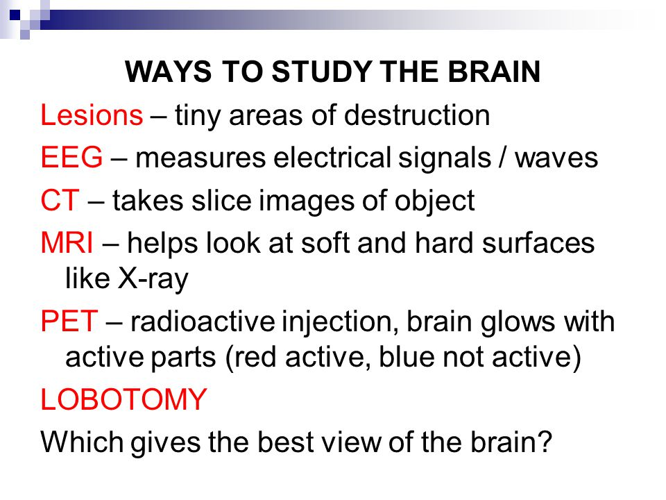 WAYS TO STUDY THE BRAIN Lesions – tiny areas of destruction. EEG – measures electrical signals / waves.