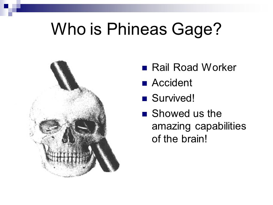 Who is Phineas Gage Rail Road Worker Accident Survived!