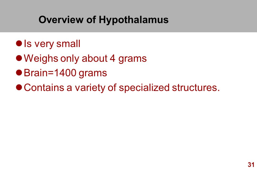 Overview of Hypothalamus