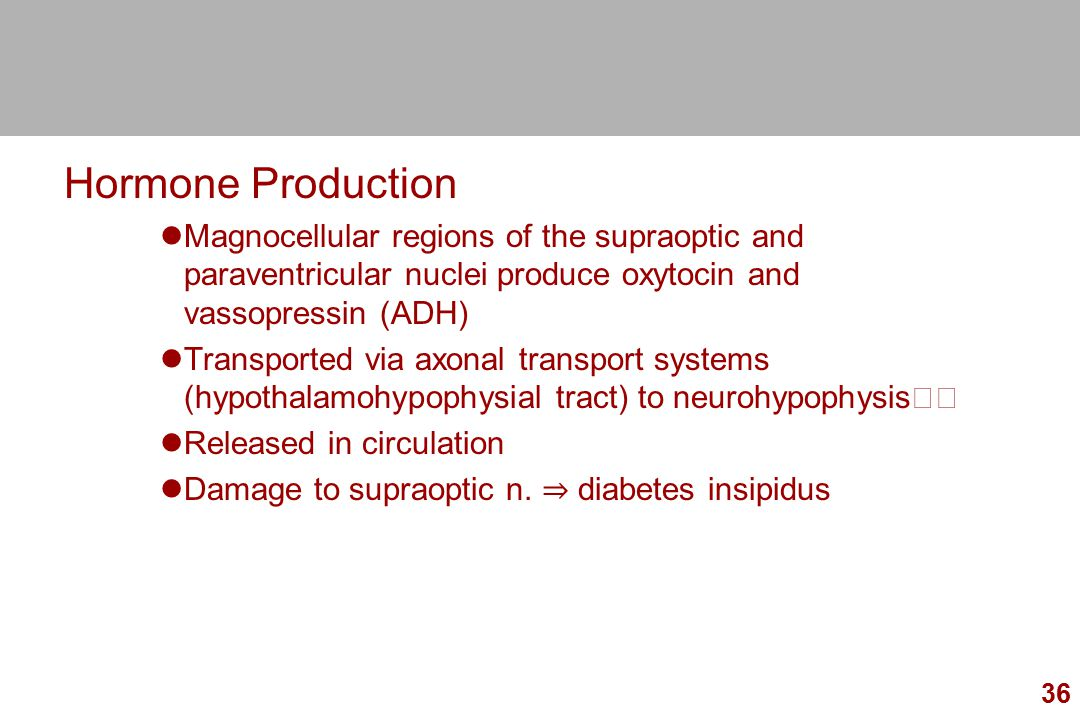 Hormone Production Magnocellular regions of the supraoptic and paraventricular nuclei produce oxytocin and vassopressin (ADH)