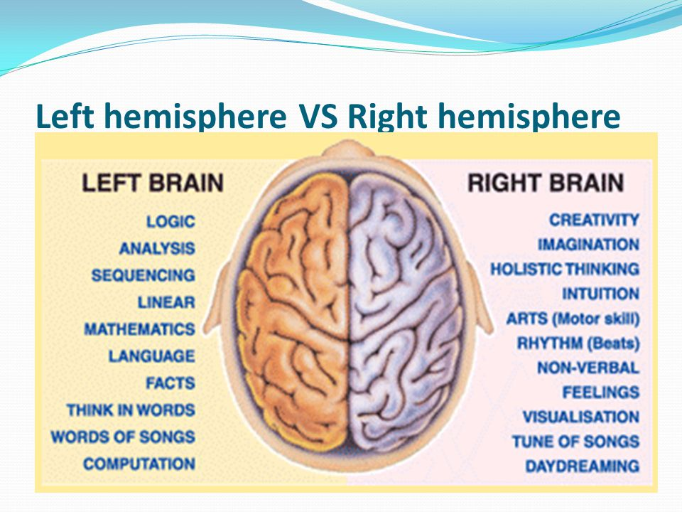Left hemisphere VS Right hemisphere