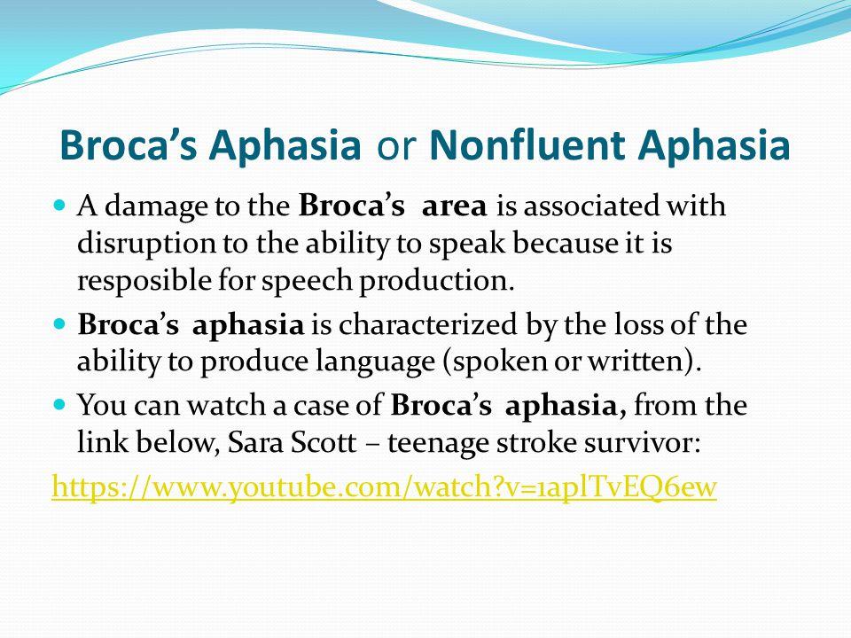 Broca's Aphasia or Nonfluent Aphasia
