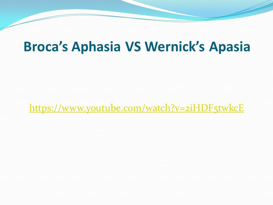 Broca's Aphasia VS Wernick's Apasia