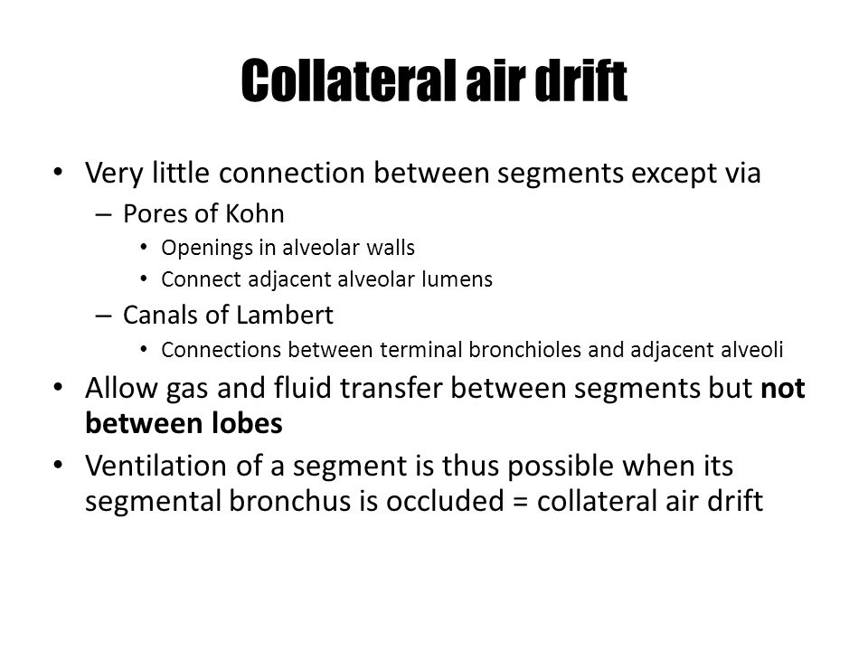 Collateral air drift Very little connection between segments except via. Pores of Kohn. Openings in alveolar walls.