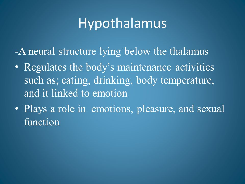 Hypothalamus -A neural structure lying below the thalamus