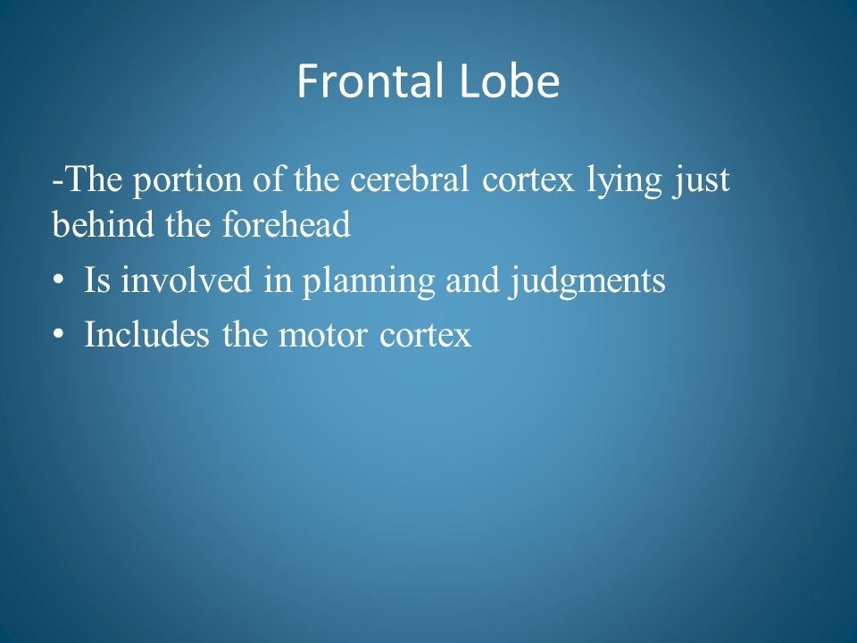 Frontal Lobe -The portion of the cerebral cortex lying just behind the forehead. Is involved in planning and judgments.