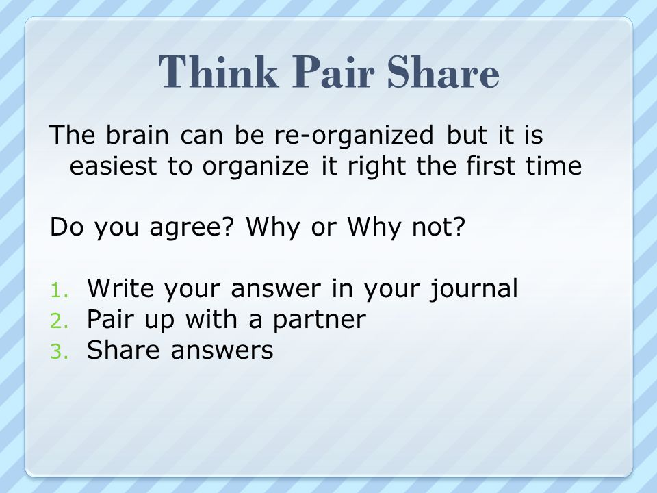 Think Pair Share The brain can be re-organized but it is easiest to organize it right the first time.