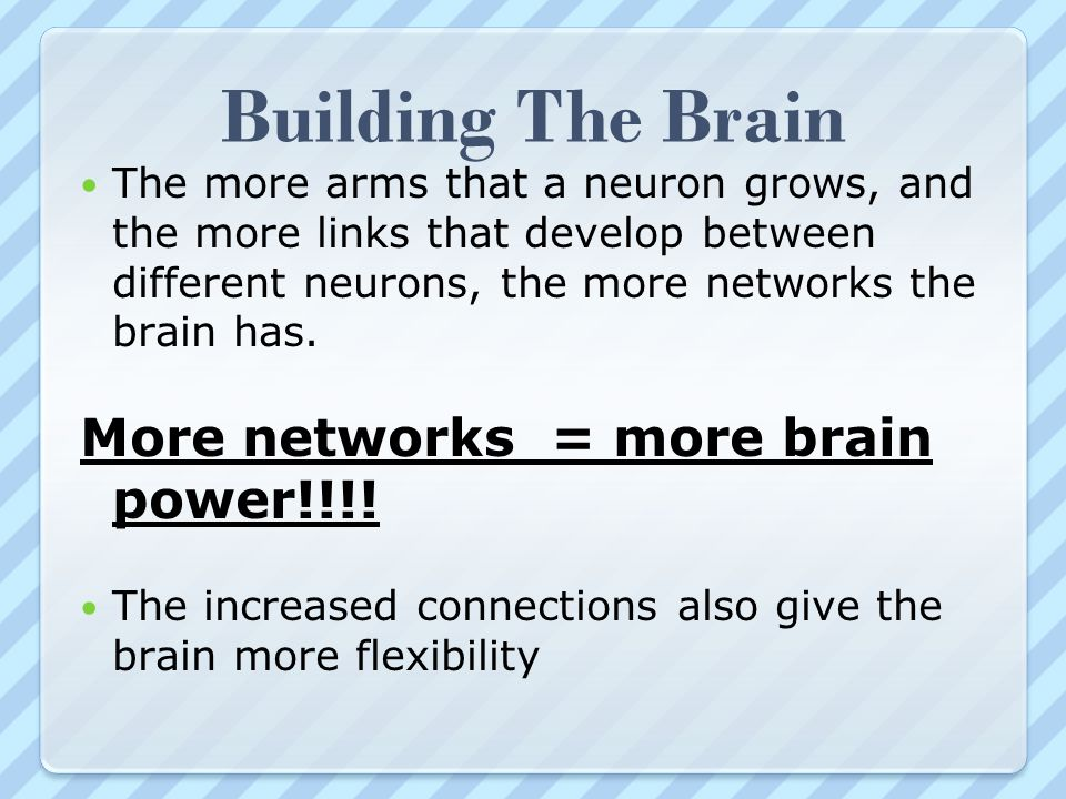 Building The Brain More networks = more brain power!!!!