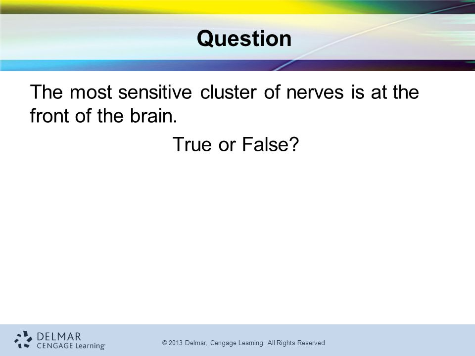 Question The most sensitive cluster of nerves is at the front of the brain. True or False
