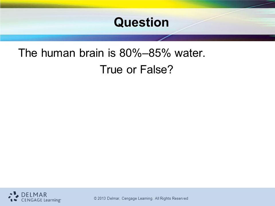 Question The human brain is 80%–85% water. True or False
