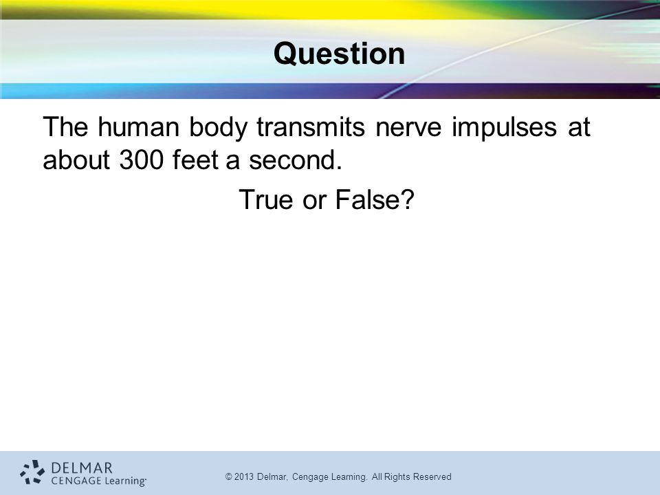 Question The human body transmits nerve impulses at about 300 feet a second. True or False