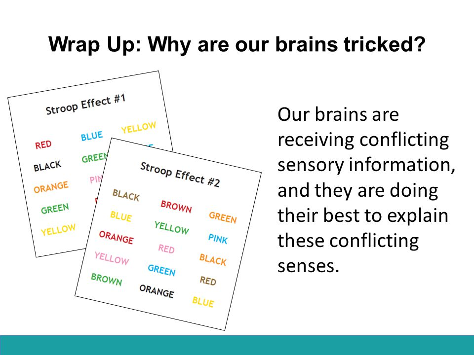 Wrap Up: Why are our brains tricked