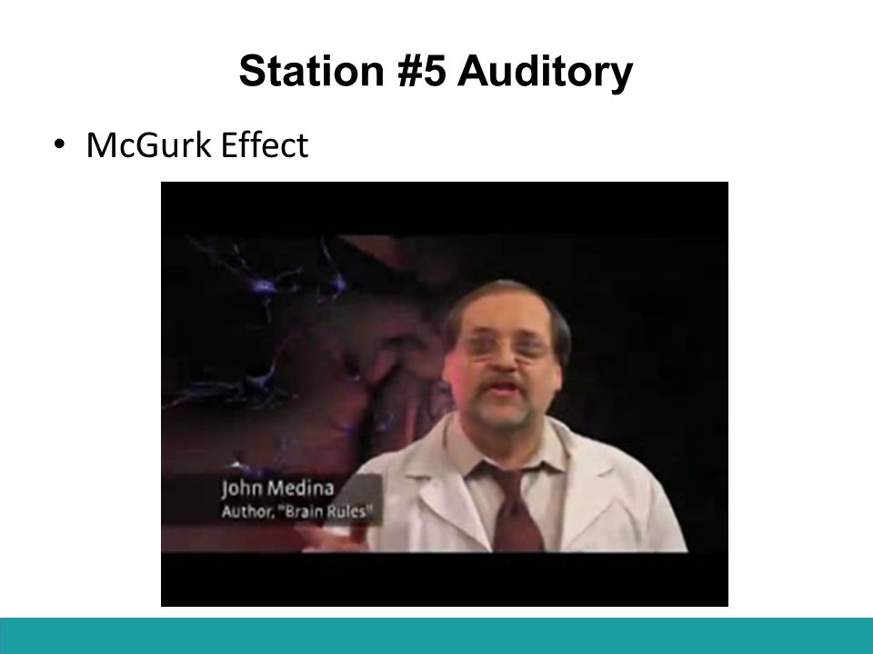 Station #5 Auditory McGurk Effect