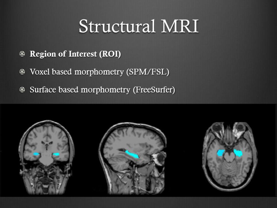 Structural MRI Region of Interest (ROI)