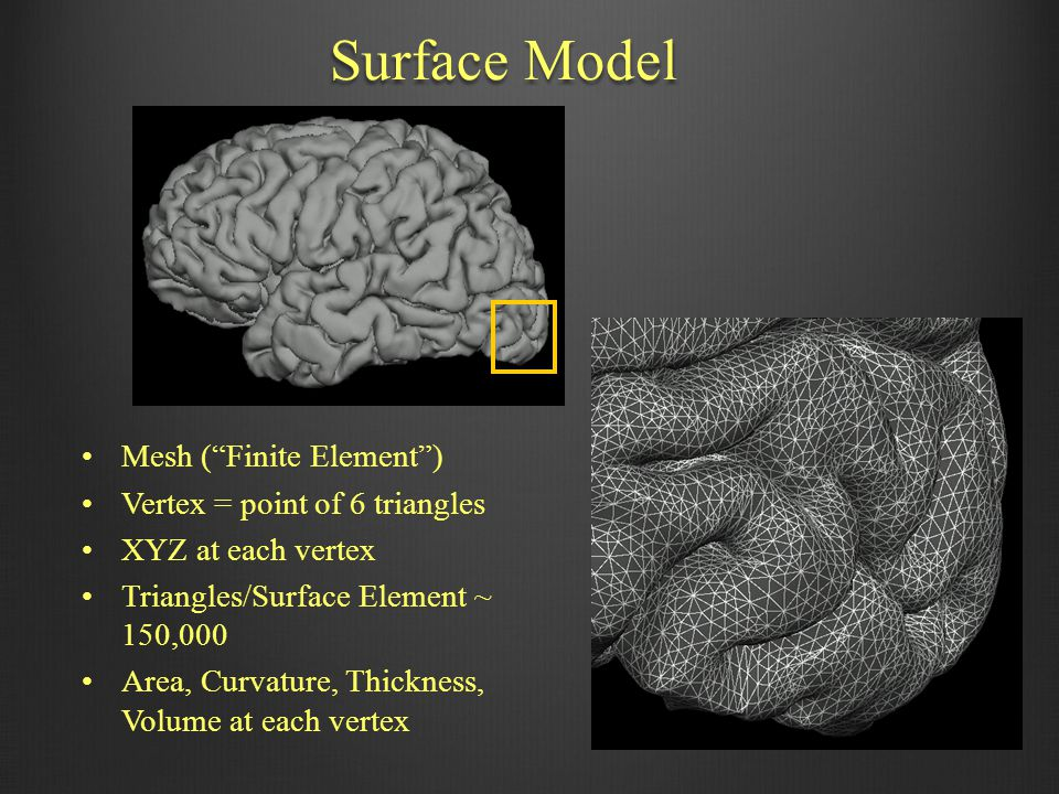 Surface Model Mesh ( Finite Element ) Vertex = point of 6 triangles