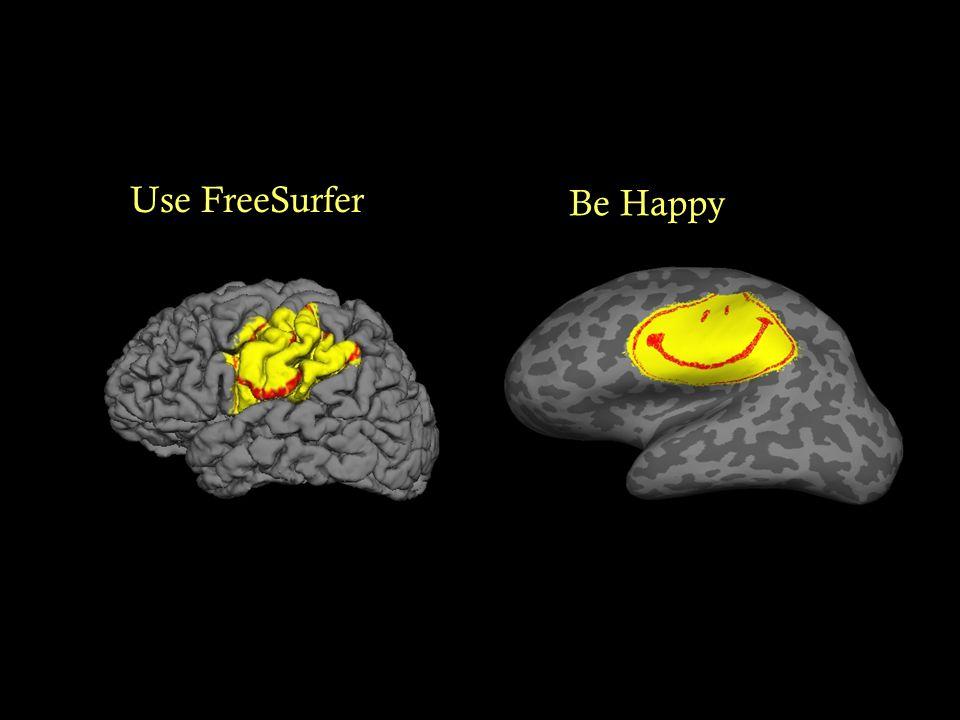 Use FreeSurfer Be Happy