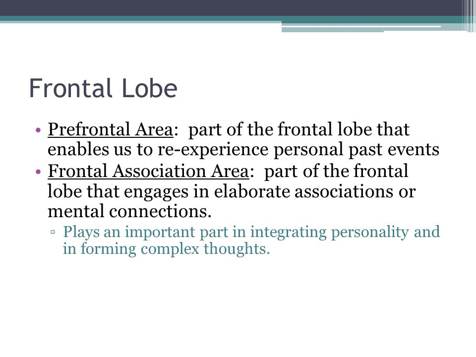 Frontal Lobe Prefrontal Area: part of the frontal lobe that enables us to re-experience personal past events.