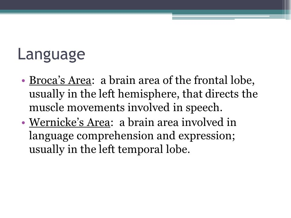 Language Broca's Area: a brain area of the frontal lobe, usually in the left hemisphere, that directs the muscle movements involved in speech.