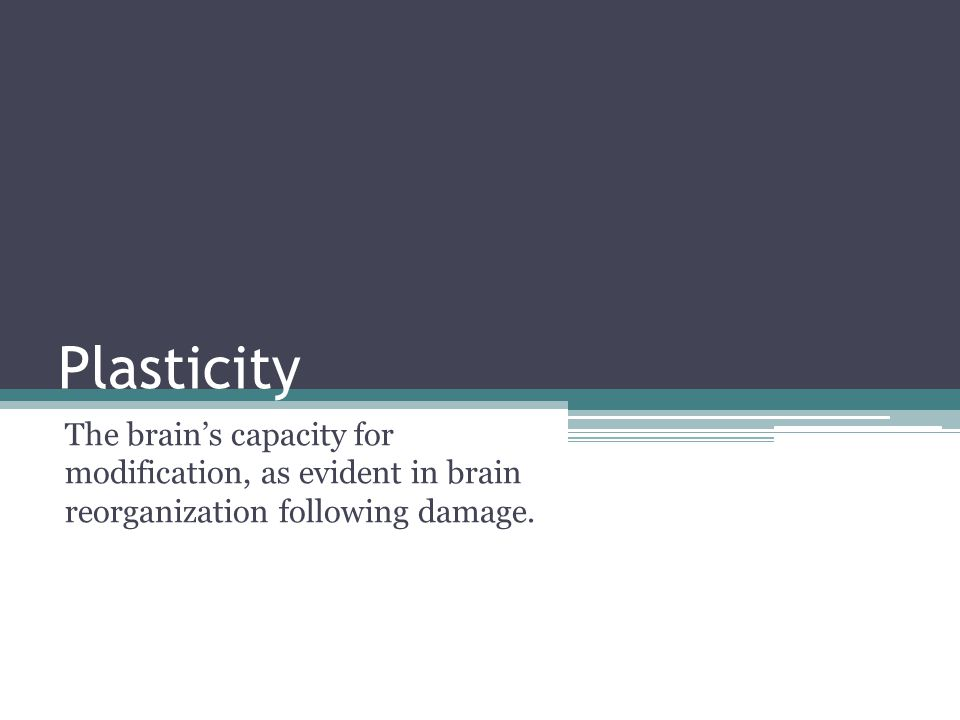 Plasticity The brain's capacity for modification, as evident in brain reorganization following damage.