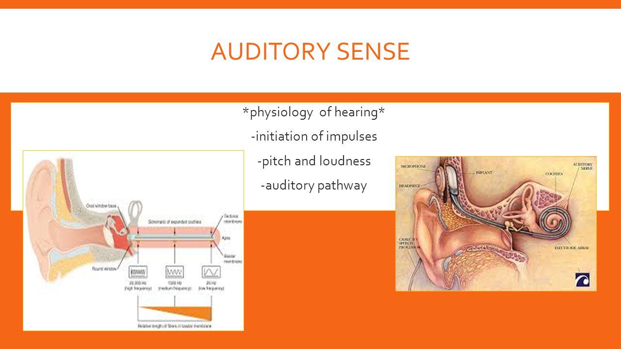 Auditory Sense *physiology of hearing* -initiation of impulses