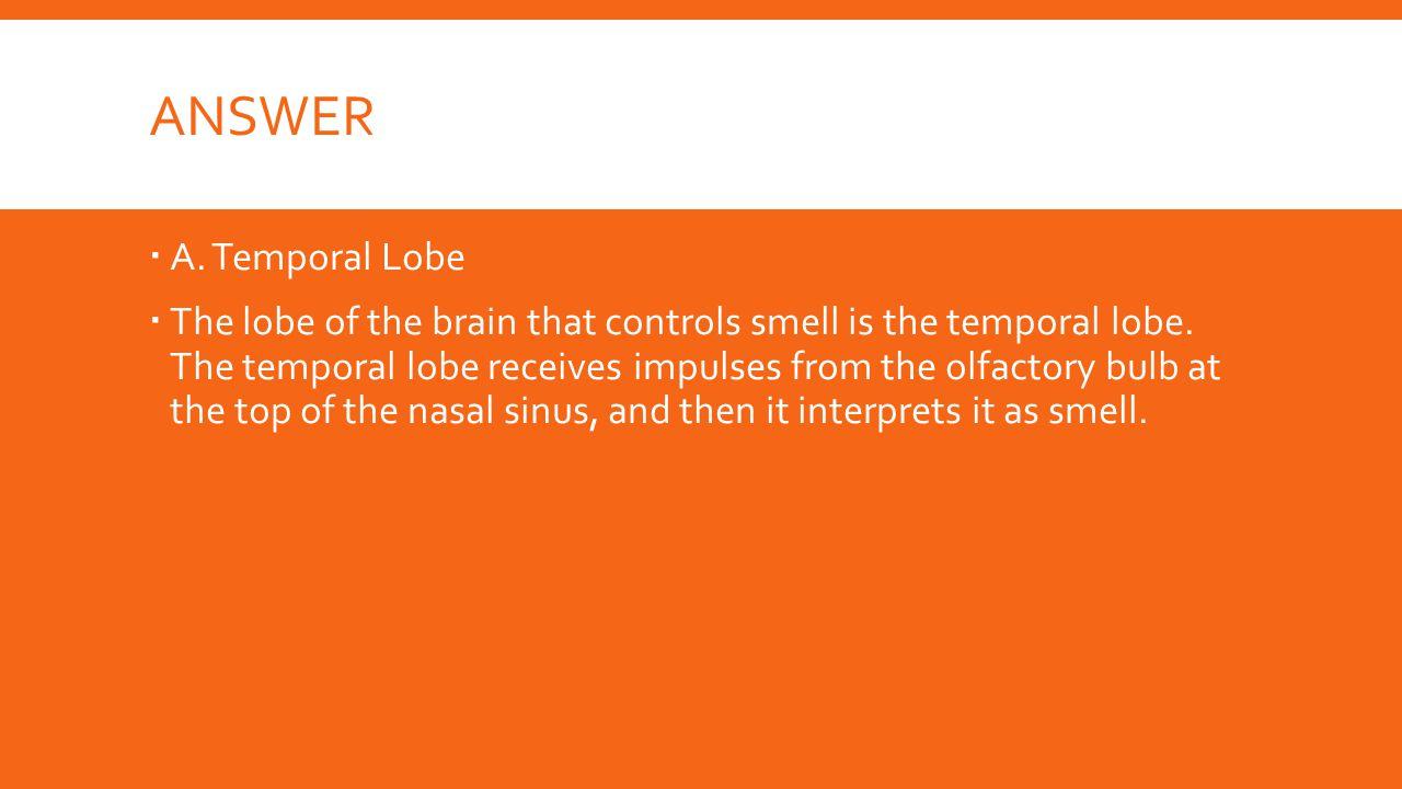 Answer A. Temporal Lobe.
