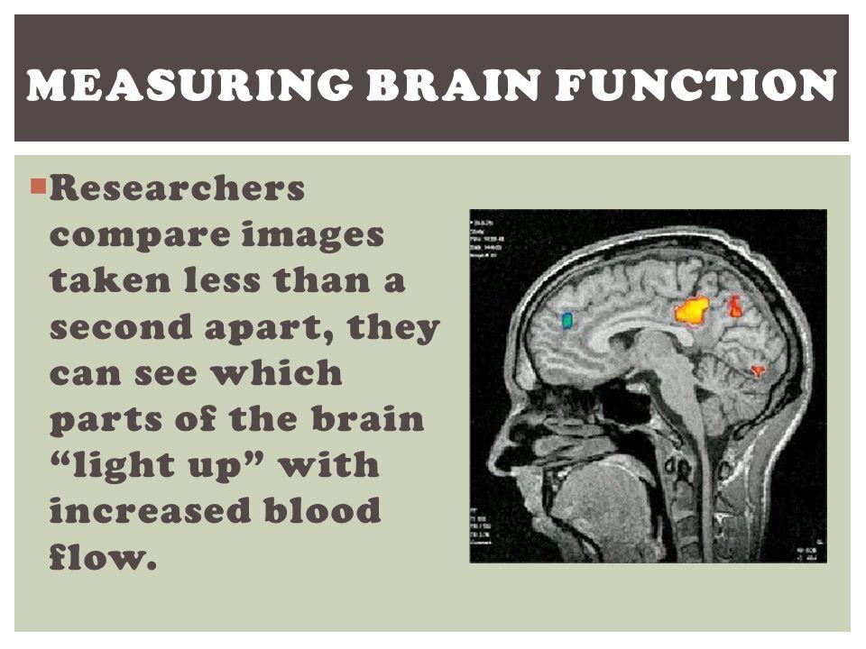 Measuring brain function
