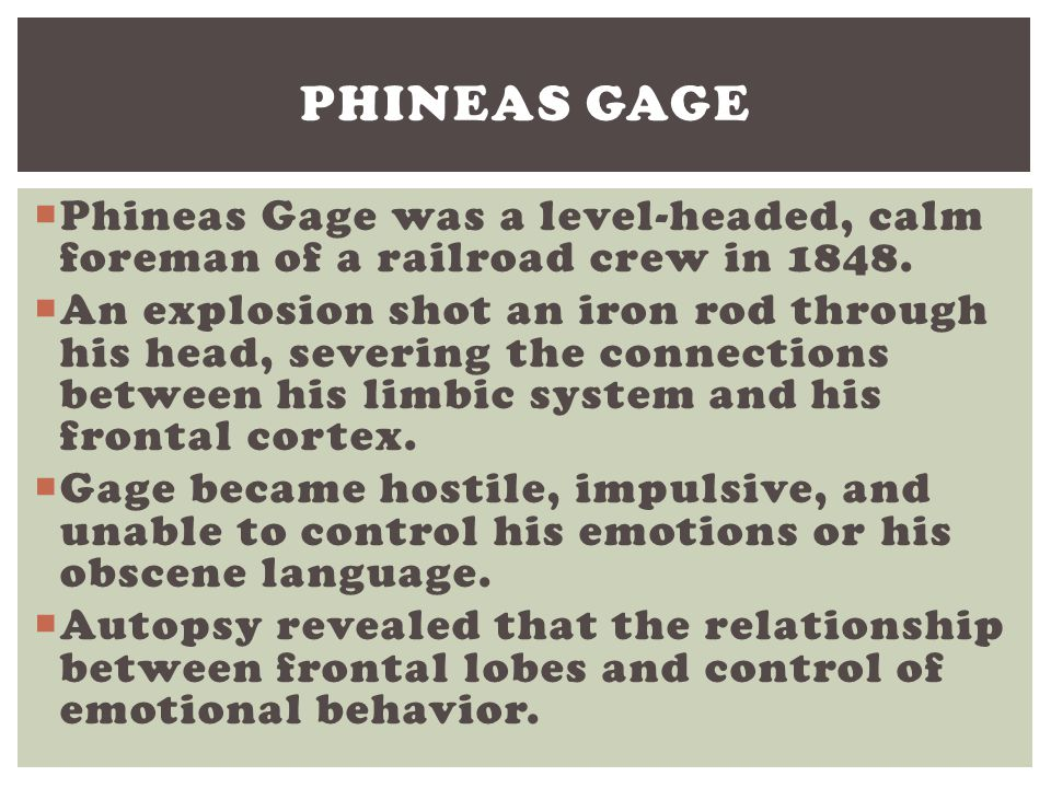 Phineas Gage Phineas Gage was a level-headed, calm foreman of a railroad crew in 1848.