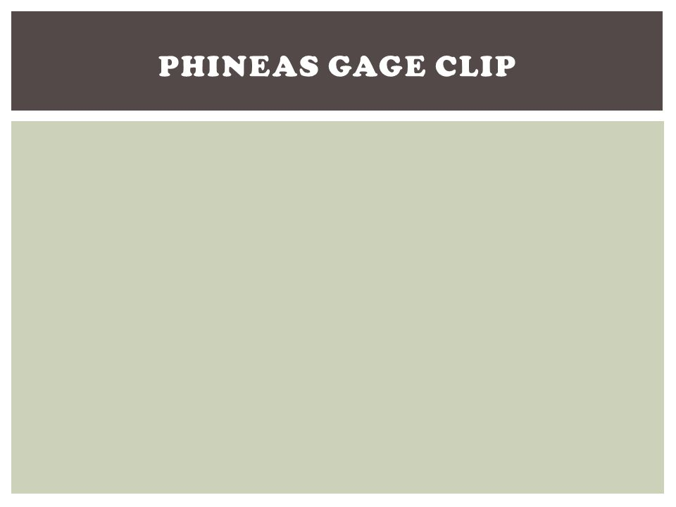 Phineas Gage Clip