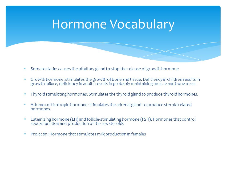 Hormone Vocabulary Somatostatin: causes the pituitary gland to stop the release of growth hormone.