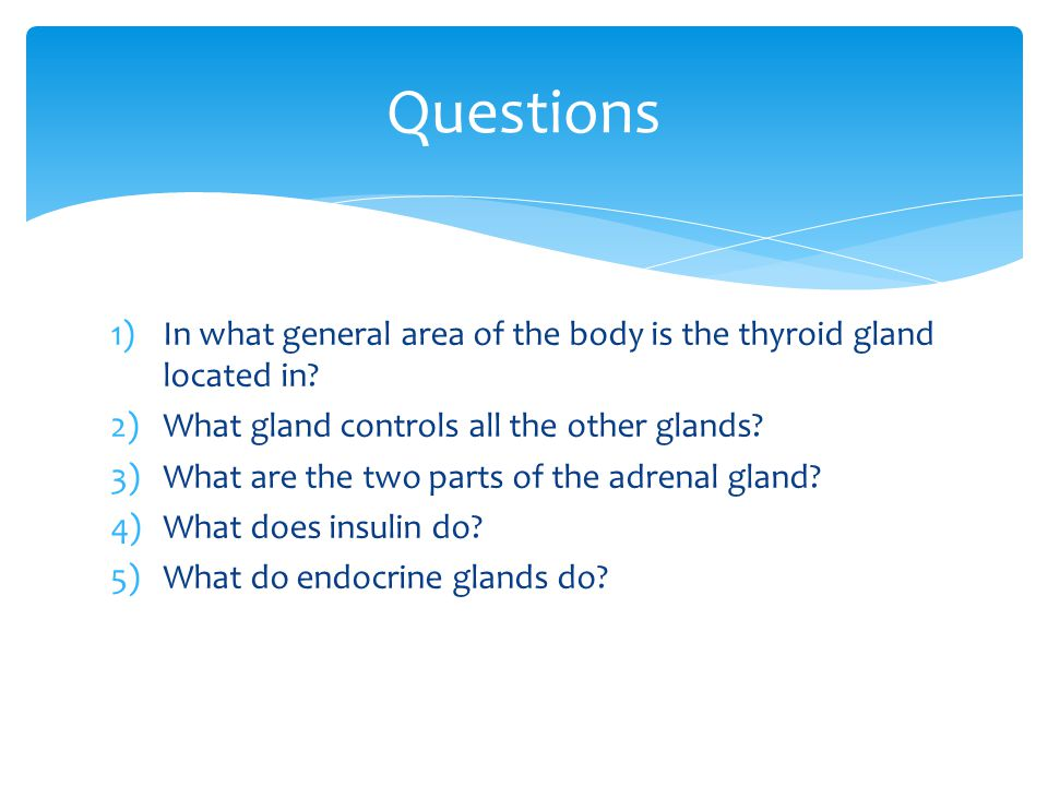 Questions In what general area of the body is the thyroid gland located in What gland controls all the other glands