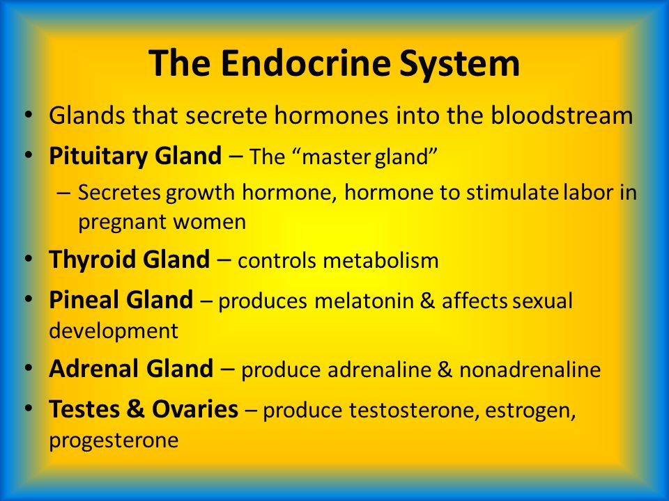 The Endocrine System Glands that secrete hormones into the bloodstream