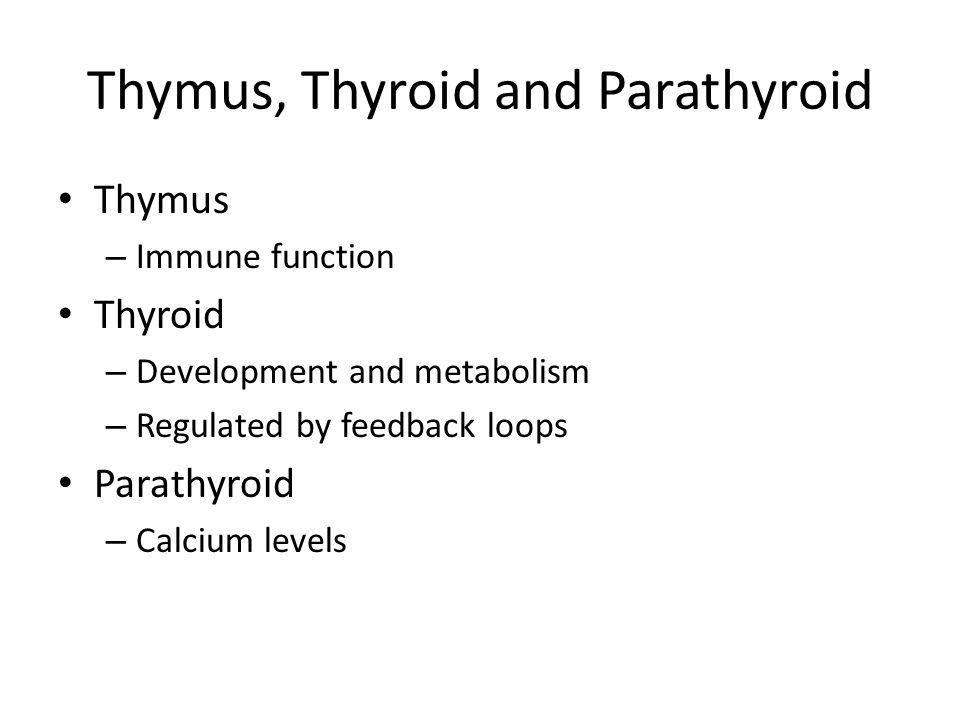 Thymus, Thyroid and Parathyroid