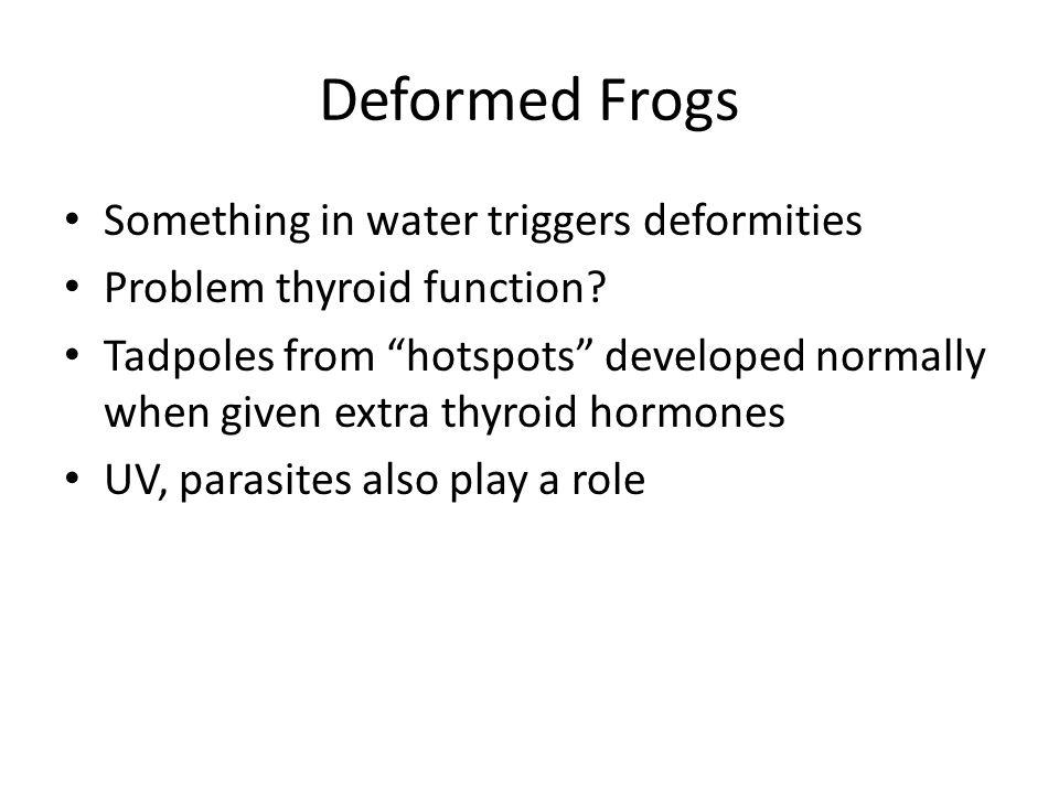Deformed Frogs Something in water triggers deformities