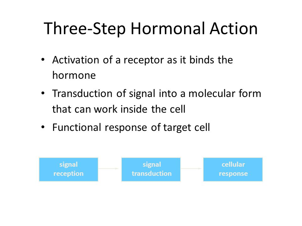 Three-Step Hormonal Action