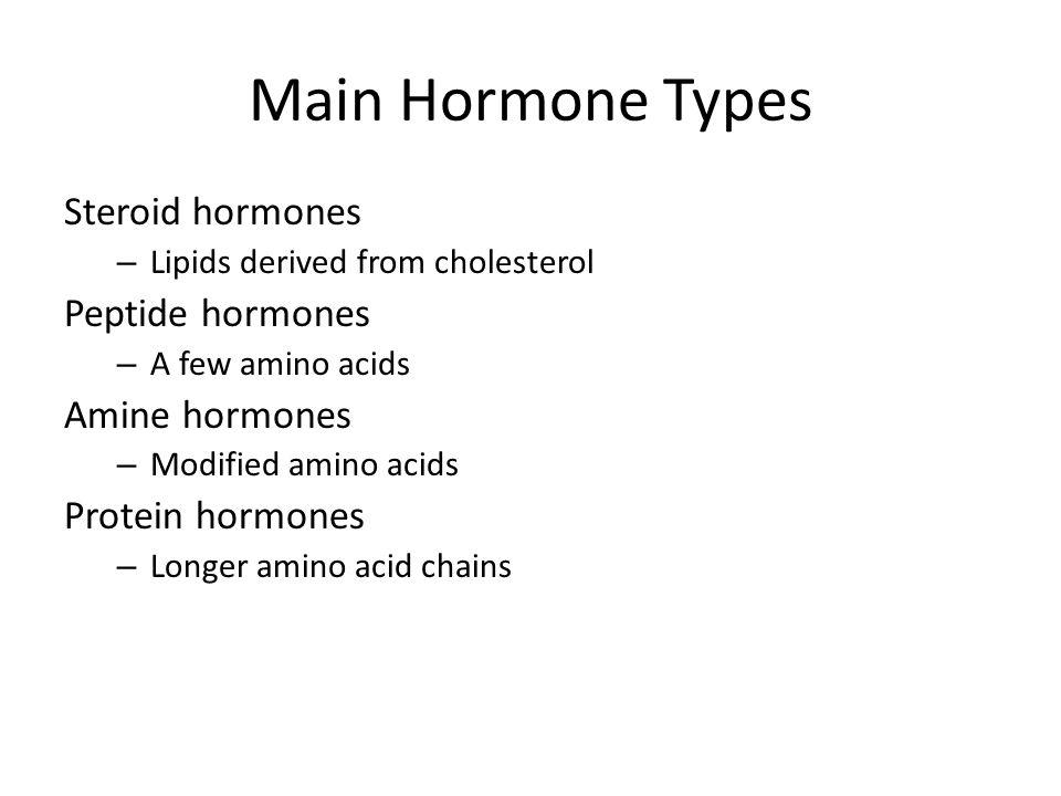 Main Hormone Types Steroid hormones Peptide hormones Amine hormones