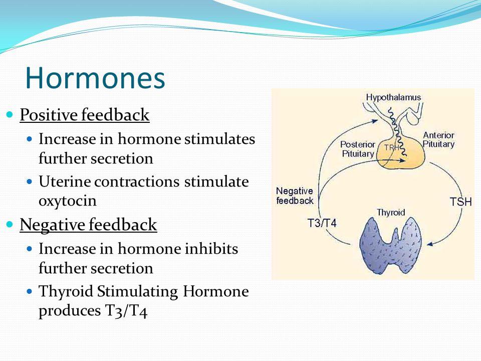 Hormones Positive feedback Negative feedback