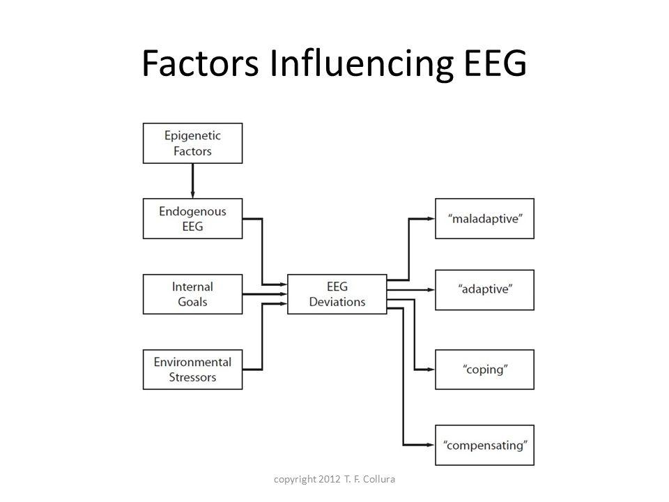 Factors Influencing EEG