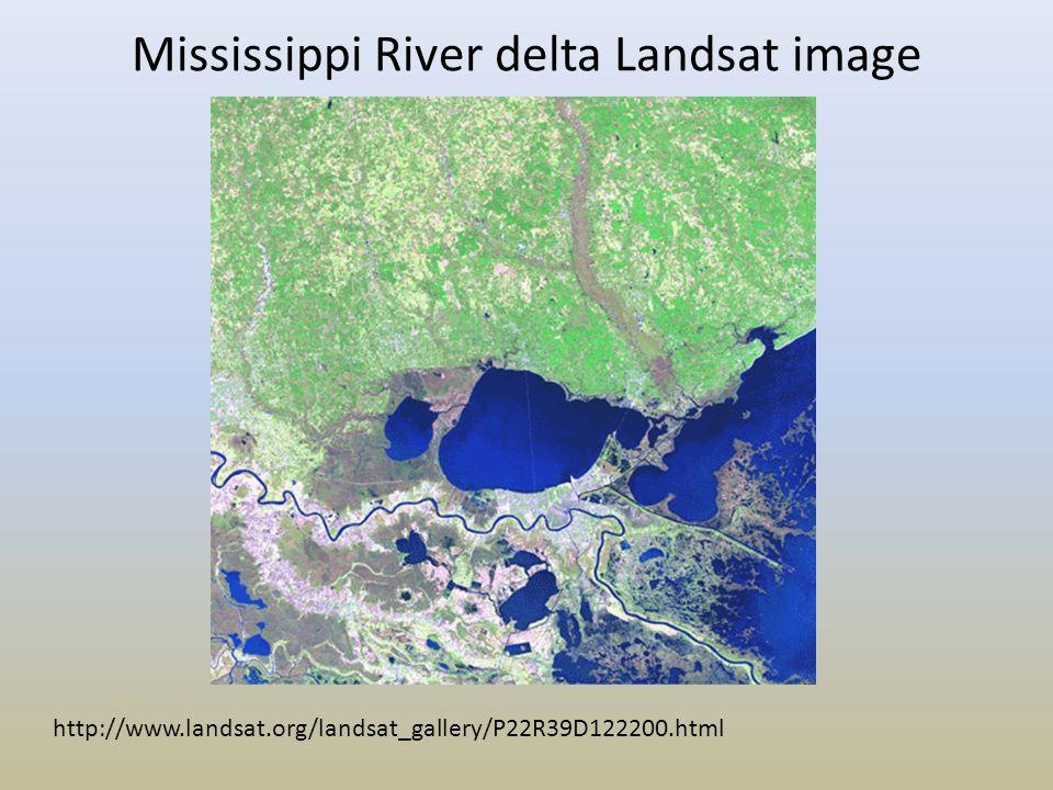 Mississippi River delta Landsat image