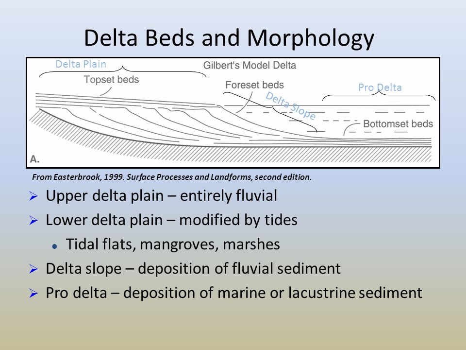 Delta Beds and Morphology