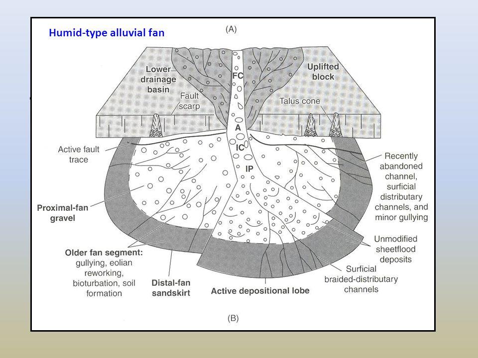 Humid-type alluvial fan