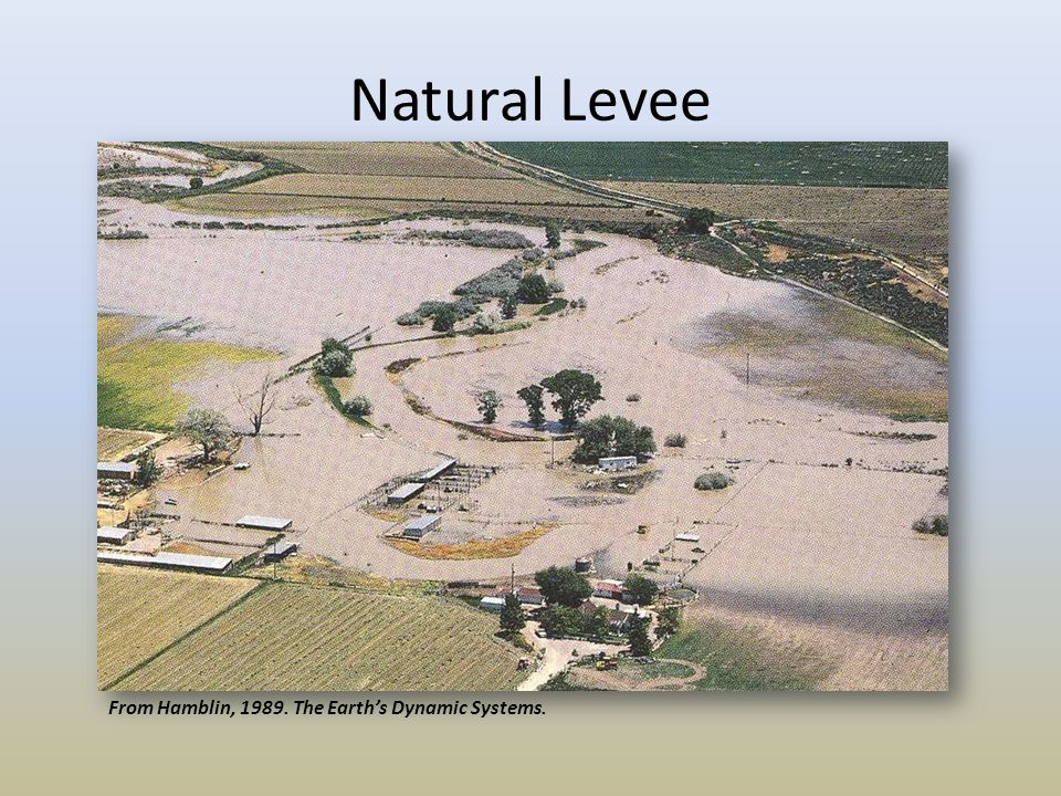 Natural Levee Hamblin From Hamblin, 1989. The Earth's Dynamic Systems.