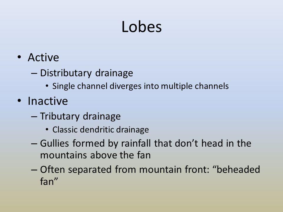 Lobes Active Inactive Distributary drainage Tributary drainage