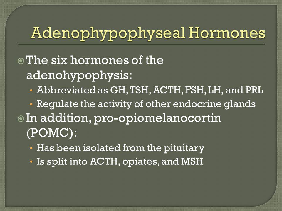 Adenophypophyseal Hormones