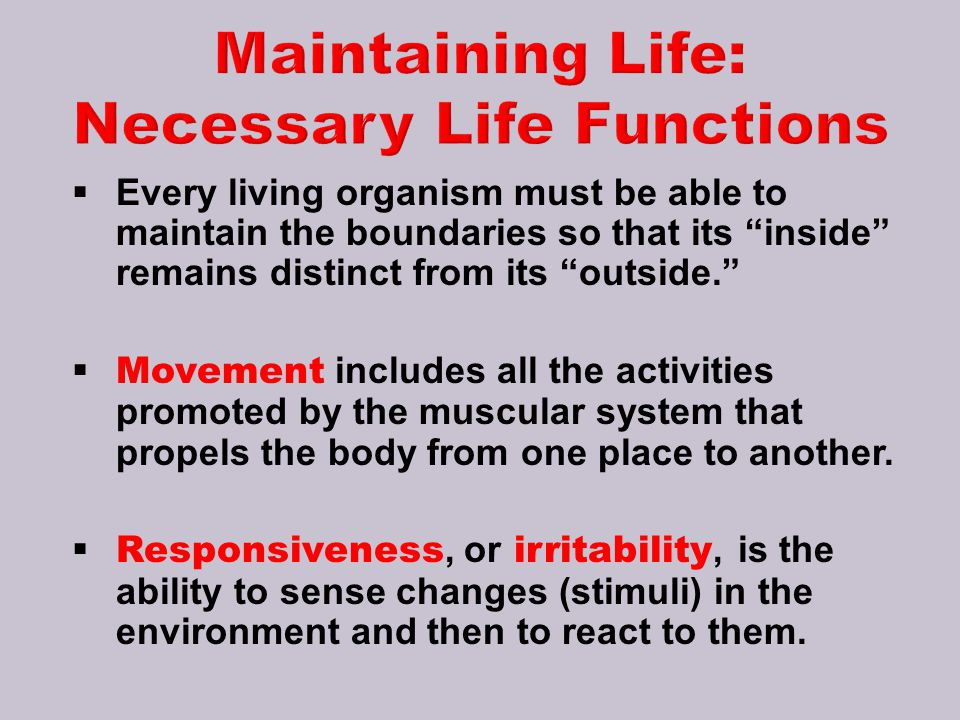 Maintaining Life: Necessary Life Functions