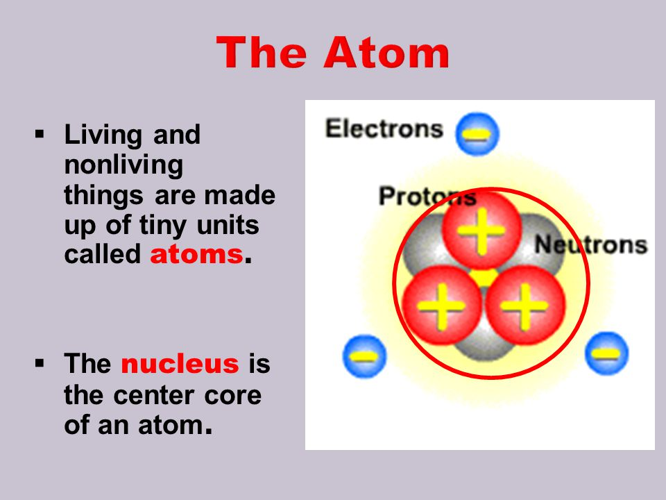 The Atom Living and nonliving things are made up of tiny units called atoms.